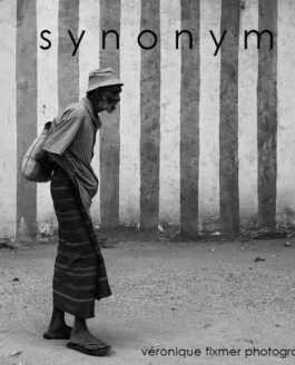 SYNONYM – the book